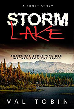 Storm Lake by Val Tobin